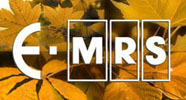 E-MRS FALL 15: Conference & Exhibit